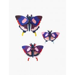 mariposas cola de golondrina, juego de 3